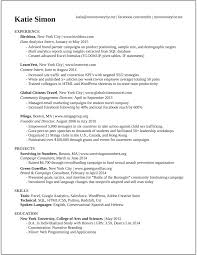 Write Resume How To Write A Professional Profile Resume Genius Summary Janitor