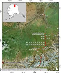 Willow Alaska Map by Pre Above Arctic Vegetation Plots Willow Communities North