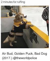 Bad Dog Meme - 25 best memes about bad dog bad dog memes