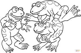 Three Frogs Coloring Page Free Printable Coloring Pages Frog Colouring Page