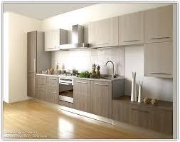 Grey Oak Kitchen Cabinets Light Wood Kitchen Cabinets Modern Home Design Ideas Light Wood