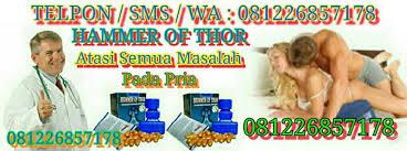081226857178 hammer of thor sleman hammer of thor jogja