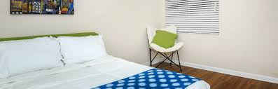 One Bedroom Apartments In St Petersburg Fl The Vibe At Gateway Apartments In St Petersburg Fl