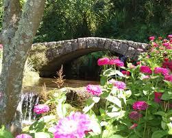 New Zealand Botanical Gardens Botanical Gardens City Council