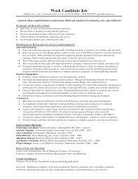 professional resume samples free custom descriptive essay editing sites for resume for