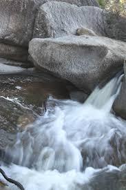 gidget retro cer 12 best gidget goes to girraween national park queensland