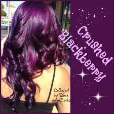 Custom House Plans Online Cutting Hair Blackberries And Purple On Pinterest Idolza