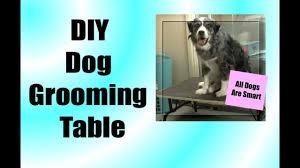 diy dog grooming table diy grooming table youtube