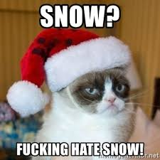 Grumpy Cat Snow Meme - snow fucking hate snow grumpy cat santa hat meme generator