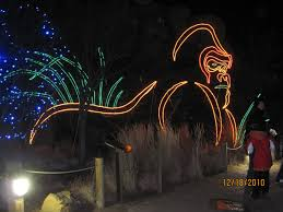 Phoenix Zoo Christmas Lights by Zoo Lights Discount Tickets Rock And Roll Marathon App