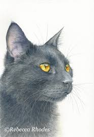 how to paint a black cat in watercolor u2013 rebecca rhodes