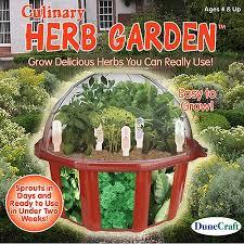 Indoor Herb Garden Kit Dunecraft Culinary Herb Garden Kit Walmart Com