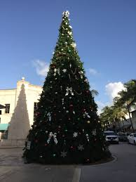 seen with jean shafiroff holidays in the sun south florida reporter