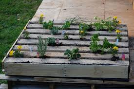 how to plant an herb garden in a salvage wood pallet how tos diy