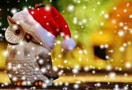 15 the best merry images merry wishes happy