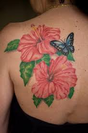 bonny pink color hibiscus flower and blue butterfly on