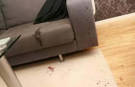 comment teindre un canapé en tissu nettoyer et entretenir un canapé ou fauteuil en tissu alcantara