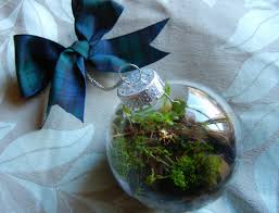 small glass diy terrarium ornament clossette
