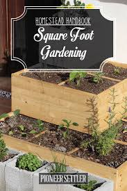 homestead guide to square foot gardening