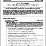 free copy and paste resume templates inspirational design ideas