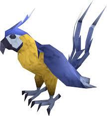 macaw runescape wiki fandom powered by wikia
