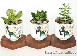 easy planter ideas nurani org