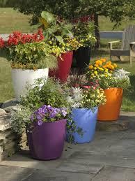 larger easy roller self watering flower pots buy from gardener u0027s