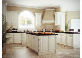 cabinets appealing wholesale kitchen cabinets design cheap