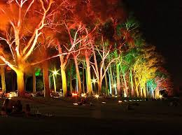 Landscaping Light Kits Low Voltage Led Landscape Lighting Kits With Colourfull Trees