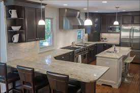 What Color To Paint Kitchen by Kitchen Dark Kitchen Ideas Blue Grey Kitchen Cabinets Dark Wood
