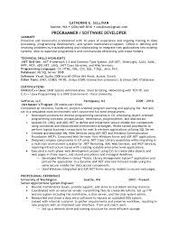 transaction processor resume print transaction processing systems