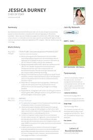 Sample Resume Executive Summary by Ceo Resume Samples Visualcv Resume Samples Database