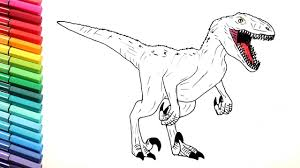 velociraptor color pages for kids drawing dinosaurs from