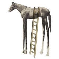 High Horse Meme - high horse blank template imgflip