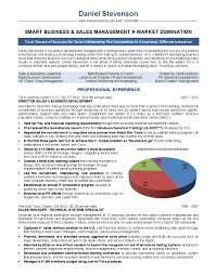 Resume Sample Sales Associate by Business Executive Resume Sample Free Resume Example And Writing