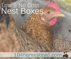 low u0026 no cost nest boxes