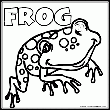 frog pictures color kids coloring