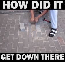 Get Down Meme - how did it get down there dank meme on sizzle