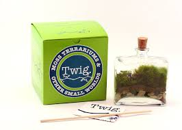 amazon com twig terrariums tropisma diy terrarium kit