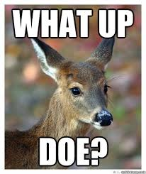 Doe Memes - what up doe what up doe quickmeme