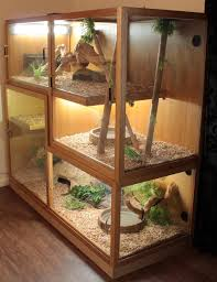 best 25 reptile tanks ideas on pinterest lizard terrarium