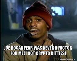 Joe Rogan Meme - joe rogan fear was never a factor for me i got crypto kitties