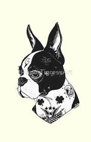 boston terrier tattoos from cory schofield in austin how to