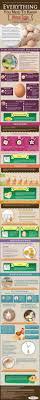 best 25 organic eggs ideas on pinterest chicken egg nutrition