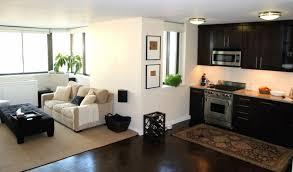 Living Room Ideas For Apartment Apartment Kitchen Living Room Ideas Kitchen And Decor
