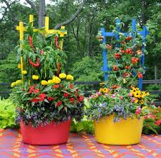 Container Gardening Ideas 15 Stunning Container Vegetable Garden Design Ideas Tips