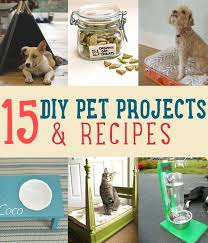 How To Make A Dog Bed Recipe Ideas For Your Pets Diy Projects Craft Ideas U0026 How To U0027s For
