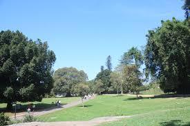 Botanic Garden Sydney Royal Botanic Garden Sydney Nepali Page