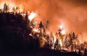 Wildfire Lytton Bc by Campfires Now Banned As Dry Conditions Make Fire Risk