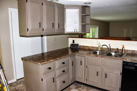 painted cabinet ideas kitchen red oak wood light grey glass panel door annie sloan chalk paint